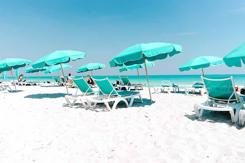 Best restaurants in Miami Florida